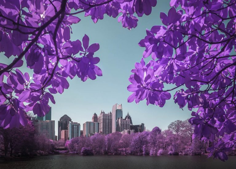 Infrared Photography by Graphiknation